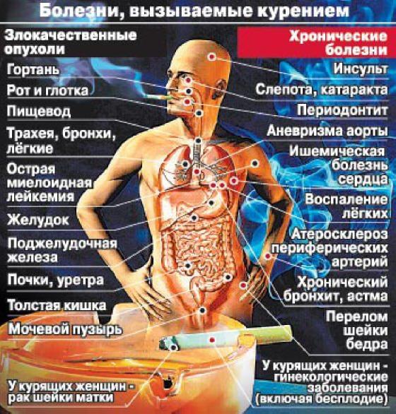 Вред никотина, влияние никотина на человека!